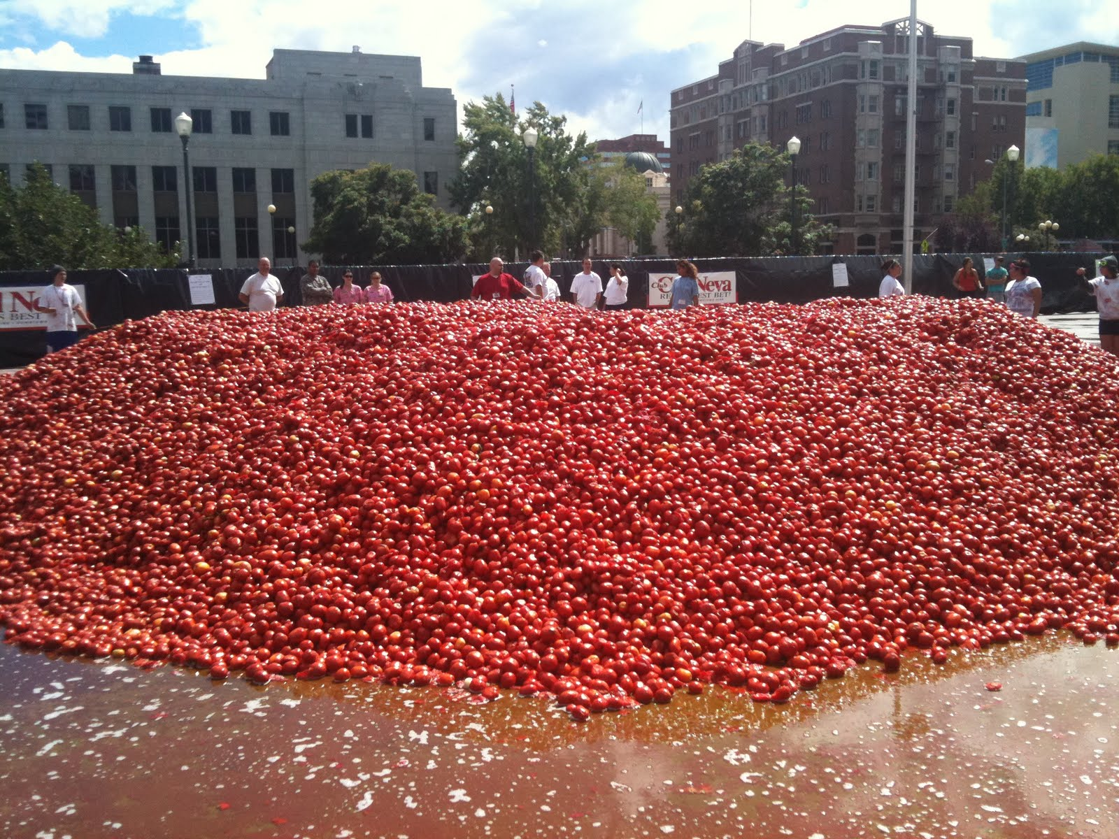 10 Facts you didn't know about La Tomatina   All Events in City